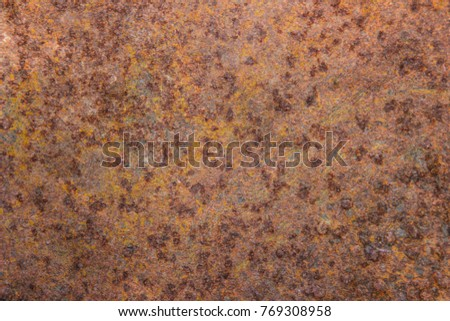 Old corroded white rustic metal on concrete texture seamless wall background. #769308958