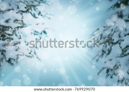 CHRISTMAS BACKGROUND WITH SNOW AND BOKEH LIGHT #769929070