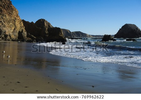 Point Reyes McClure's Beach Royalty-Free Stock Photo #769962622