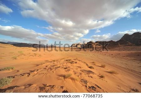 Desert landscape - sand dune - nature background