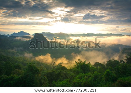 fog and cloud mountain valley landscape, Thailand #772305211