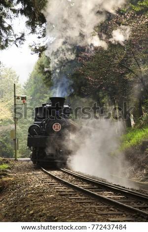 Steam Train in Ali mountain #772437484