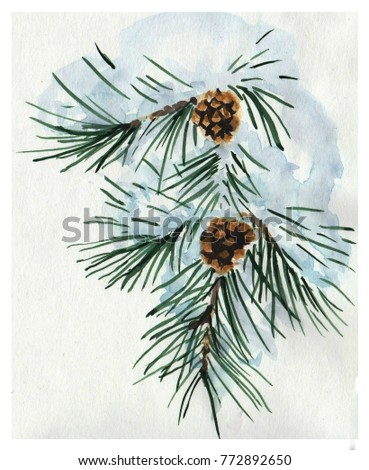 Watercolor pine branch in the snow