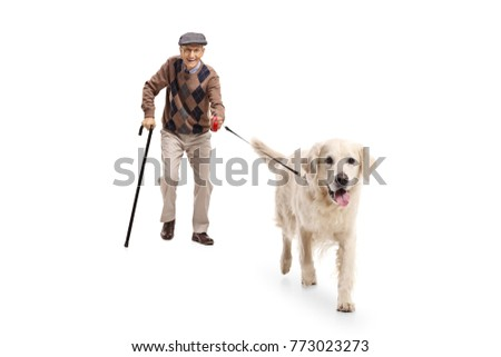 Full length portrait of an elderly man walking a dog isolated on white background #773023273