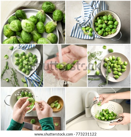 Collage with fresh brussel sprouts #773231122