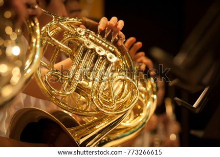French Horn intrument Royalty-Free Stock Photo #773266615
