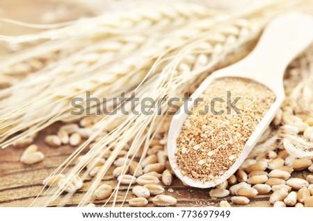 Wheat bran in wooden spoon on wheat ears plants background, unprocessed miller's bran, selective focus #773697949