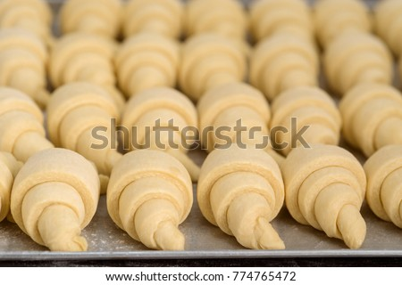 Close up on raw croissants before baking. Classic French pastry made of Viennoiserie dough with vanilla creme. #774765472
