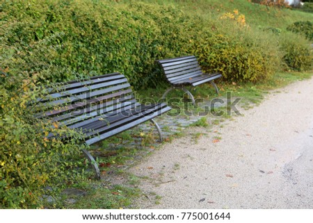 Autumn in the park / Maple leaves lie on a bench #775001644