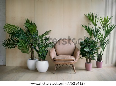 Modern loft living room with plywood wall and wooden floor, retro brown leather armchair and green tropical fern plants in pots near low sill window. Mock up interior photo simple urban jungle style #775254127