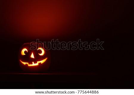 Pumpkin halloween background #775644886