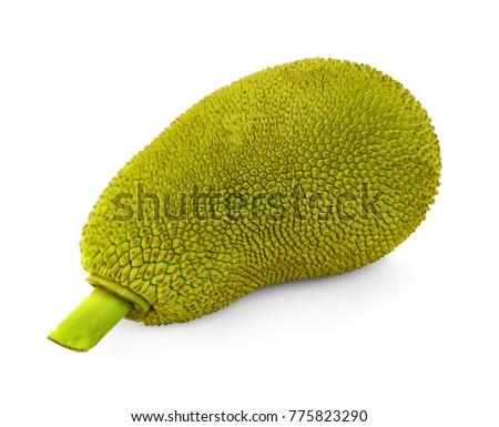 Jackfruit isolated on white background #775823290