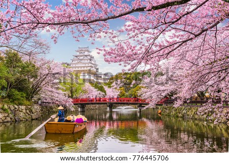 Himeji, Japan at Himeji Castle in spring season. Royalty-Free Stock Photo #776445706