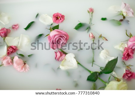 Turbid soapy water in bath with pink and white roses and petals viewed from above in full frame #777310840