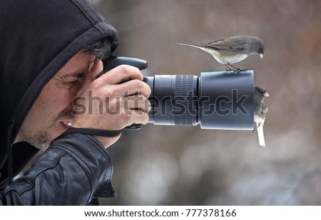Nature photographer photographing birds