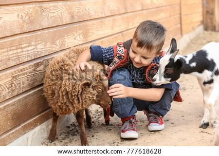 Cute little boy with sheep in petting zoo Royalty-Free Stock Photo #777618628