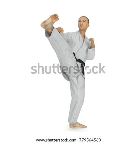 Karate man in a kimono fighting pose on white. 3D illustration #779564560