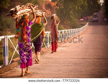 A rural view of the rural Gujarat, on the way to Zarwani Waterfalls, Baroda #779723326