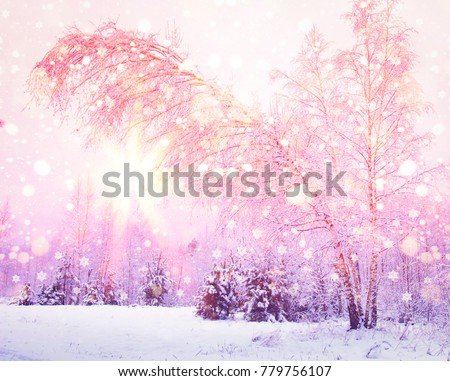 Winter nature at sunrise with pink light of sun. Colored snowflakes shining on sun. Snowy forest. Christmas background. #779756107