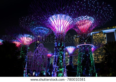 SINGAPORE - NOVEMBER 7, 2017: view of the Gardens by the Bay Supertrees and it's colourful lightshow. This show goes on everyday and attracts a lot of tourists and local residents.  #780010381