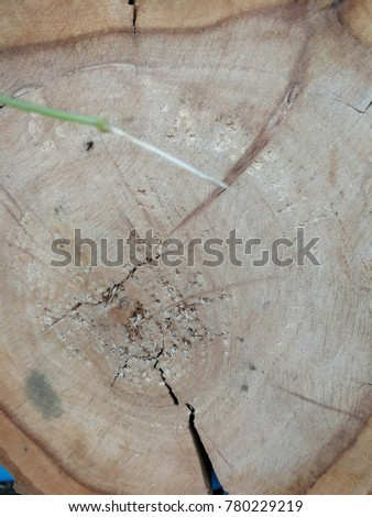 the wooden background #780229219