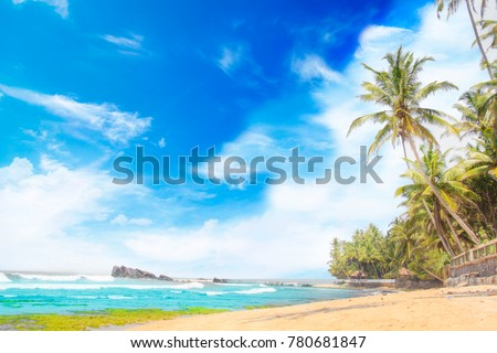 Beautiful view of the tropical beach of Sri Lanka on a sunny day #780681847