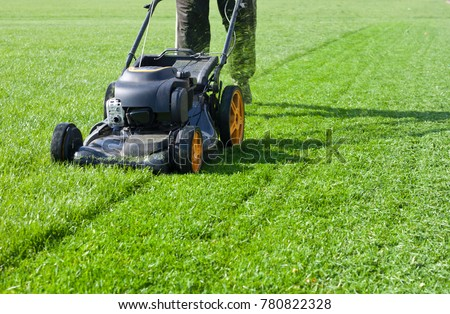 Worker guy shake pour grass from lawn mower bag into wheelbarrow. Garden meadow lawn cutting. Summer works in garden. Static shot. #780822328
