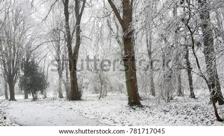 Snowy winter landscape in city park #781717045