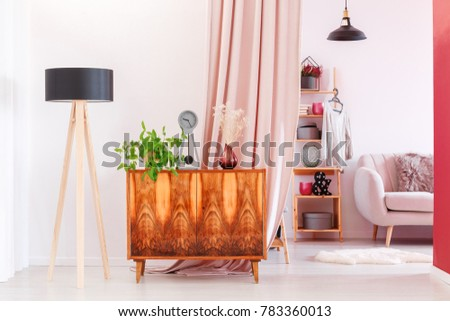 Plants and clock on wooden vintage cupboard next to lamp in interior with wardrobe and pink cloth #783360013