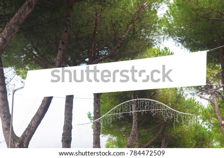 Blank billboard ready for advertising hanging on pine trees