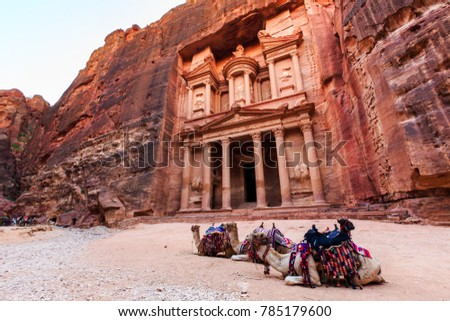 Camels in front of the Treasury at Petra the ancient City  Al Khazneh in Jordan lit by the sun #785179600