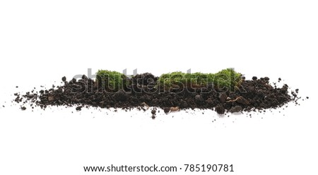 Green moss and pile dirt isolated on white background, with clipping path #785190781