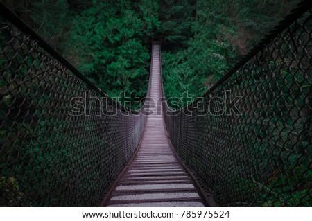 Suspension Bridge into Dark trees  Royalty-Free Stock Photo #785975524