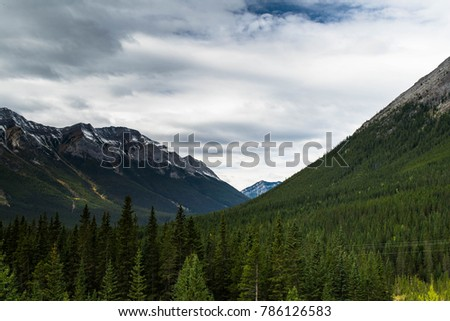 Kananaskis valley with a forest of trees and series of mountains in Alberta, Canada #786126583