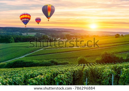 Colorful hot air balloons flying over champagne Vineyards at sunset montagne de Reims, France #786296884