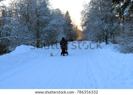 woman walks in the winter with a stroller and a small dog #786356332