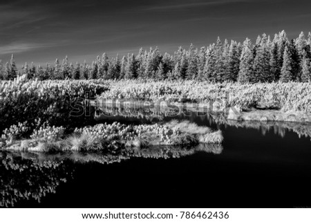 A lake with its surrounding reflected in it, in black and white, shot in infrared