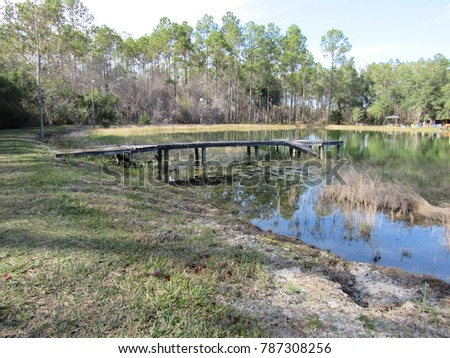 View of pond with old dock #787308256