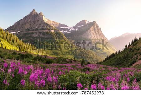 Glacier National Park  Royalty-Free Stock Photo #787452973