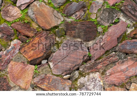Moss over the old stone wall texture background #787729744