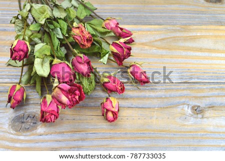 Dry roses on wooden background #787733035