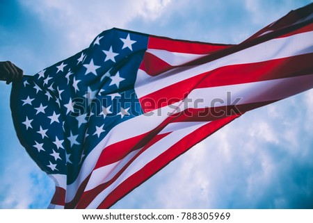 USA flag blown by the wind. #788305969