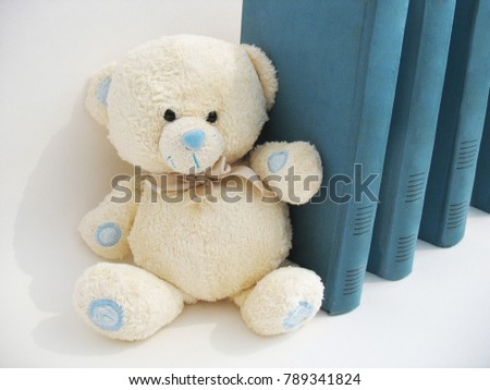 Soft toy bear. #789341824