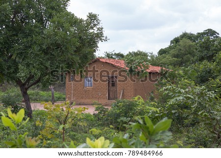Small Rural House in Piaui, Brazil #789484966
