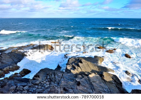 Rocky beach near Admirals Arch, located on the southwest of Kangaroo island, is the home of  New Zealand fur seal colony. #789700018
