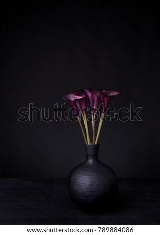 Black on black still life with dark purple /  black calla lillies in a black hammered vase.