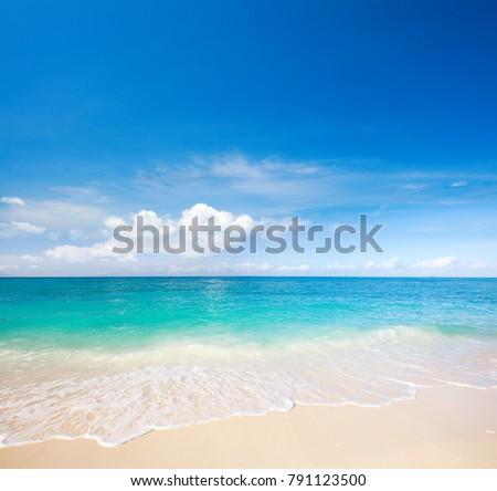 beach and beautiful tropical sea #791123500
