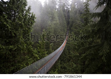 Capilano Suspension Bridge. Vancouver British Columbia Canada. Nature. Evergreen.  Royalty-Free Stock Photo #791861344