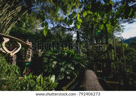Woman looking at the beautiful gardens  at Xilitla, San Luis Potosí, México.  #792406273