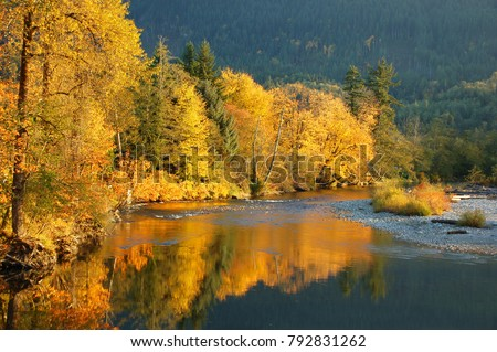 Fall Colors on the Stillaguamish River of Washington State #792831262